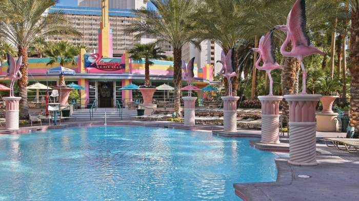 las vegas flamingo swimming pool