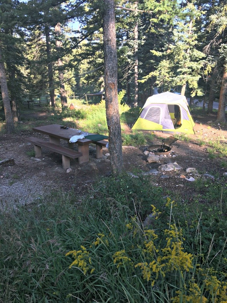 Cedar Canyon Campground 5