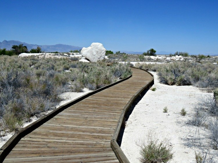 Longstreet Spring and Cabin at Ash Meadows