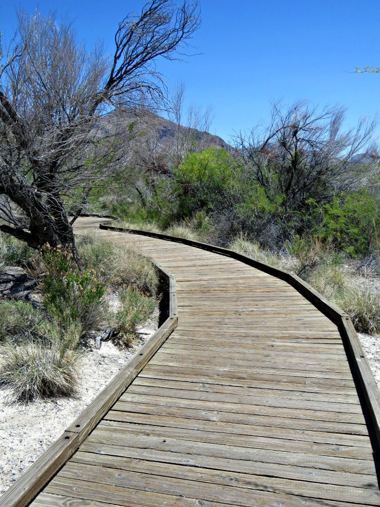 Point of Rocks Boardwalk at Ash Meadows